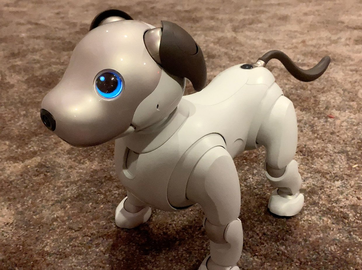 Sony Aibo Robot Dog Review: K-9 Eat Your Heart Out