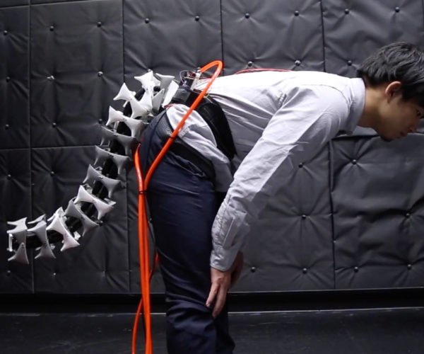 This Augmentation Give Humans a Robot Tail