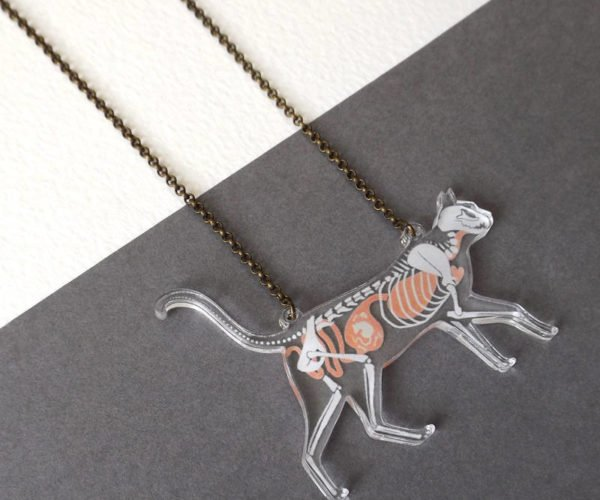 This X-Ray Necklace Offers a Glimpse Inside Your Cat