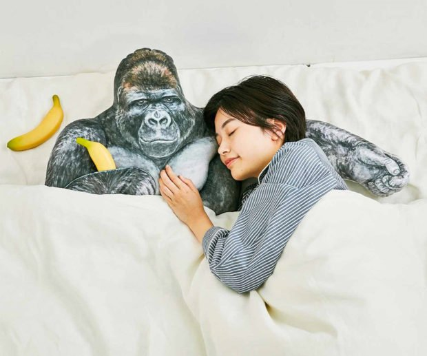 Sleep with a Gorilla in Your Bed