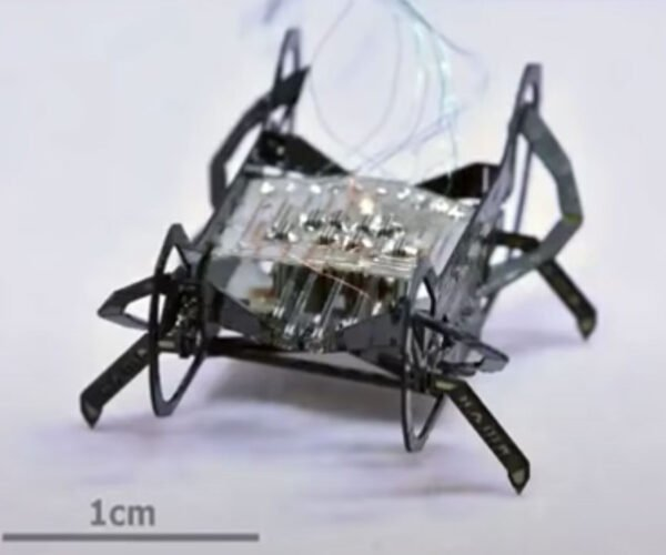 HAMR Jr. Is a Tiny Robot Insect Less Than an Inch Long