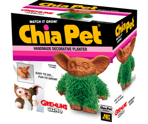 Gremlins Gizmo Chia Pet: Should I Water This or Not?
