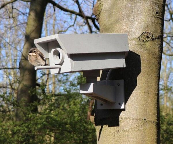 DIY Wooden Security Camera Birdhouse: Big Bird Is Watching