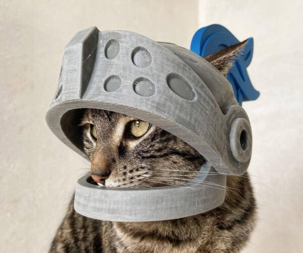 This Guy Makes Helmets for His Cat